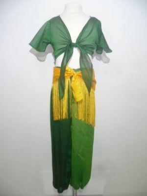 Pumphose in zwei Grüntönen mit zwei Blusen und Gürtel